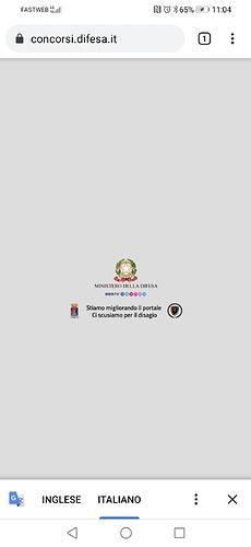 Screenshot_20201112_110419_com.android.chrome